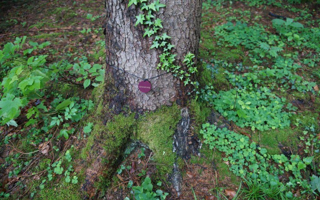 Baumbestattung Kundl Themenbaum