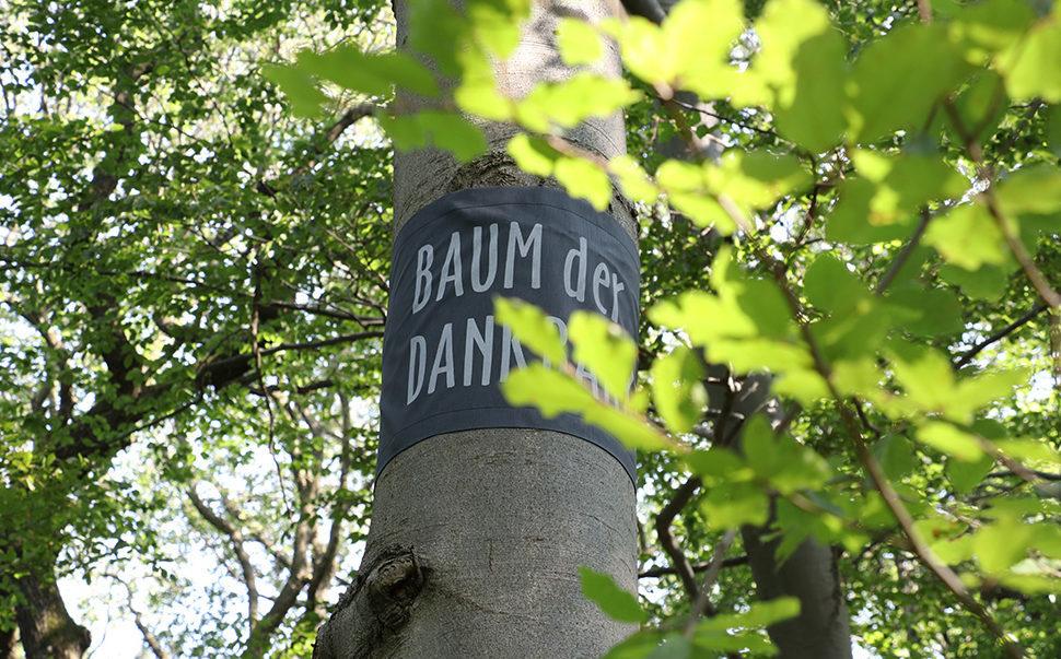 Baumbestattung im Wald der Ewigkeit in Gießhübl Mödling bei Wien Naturbestattung Gmbh Zadrobilek
