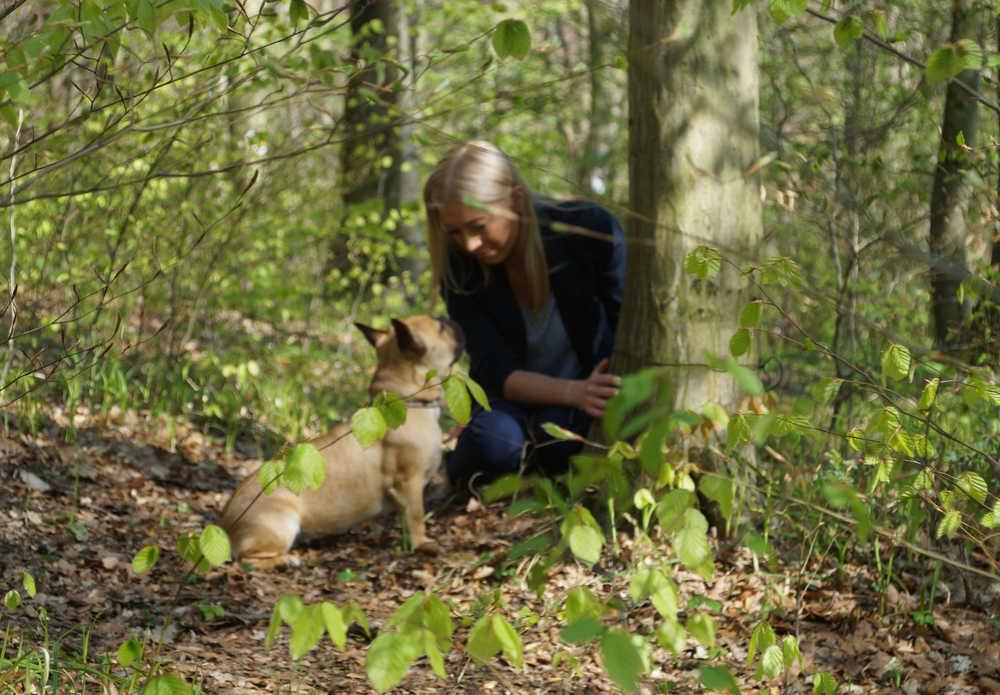 Menschen und Hunde Tierbestattung Baumbestattung Naturbestattung
